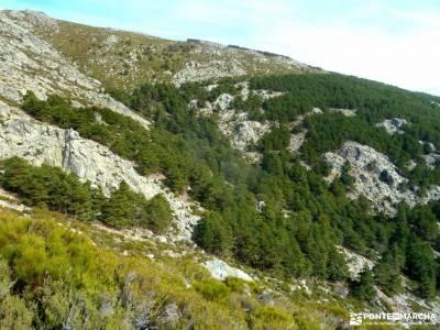 Guadarrama;Pico de la Najarra-castillo coca excursiones y senderismo embalse atazar